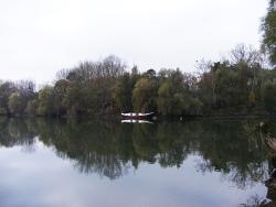 Auch die Altrheinarme und angrenzende Baggerseen sind interessante Angelgewässer