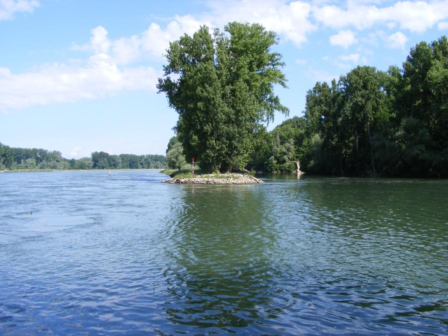 Der Rhein bei Hochstetten