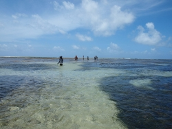 Malindi, way to the reef during low tide