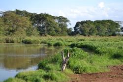 Lake of the Sante River